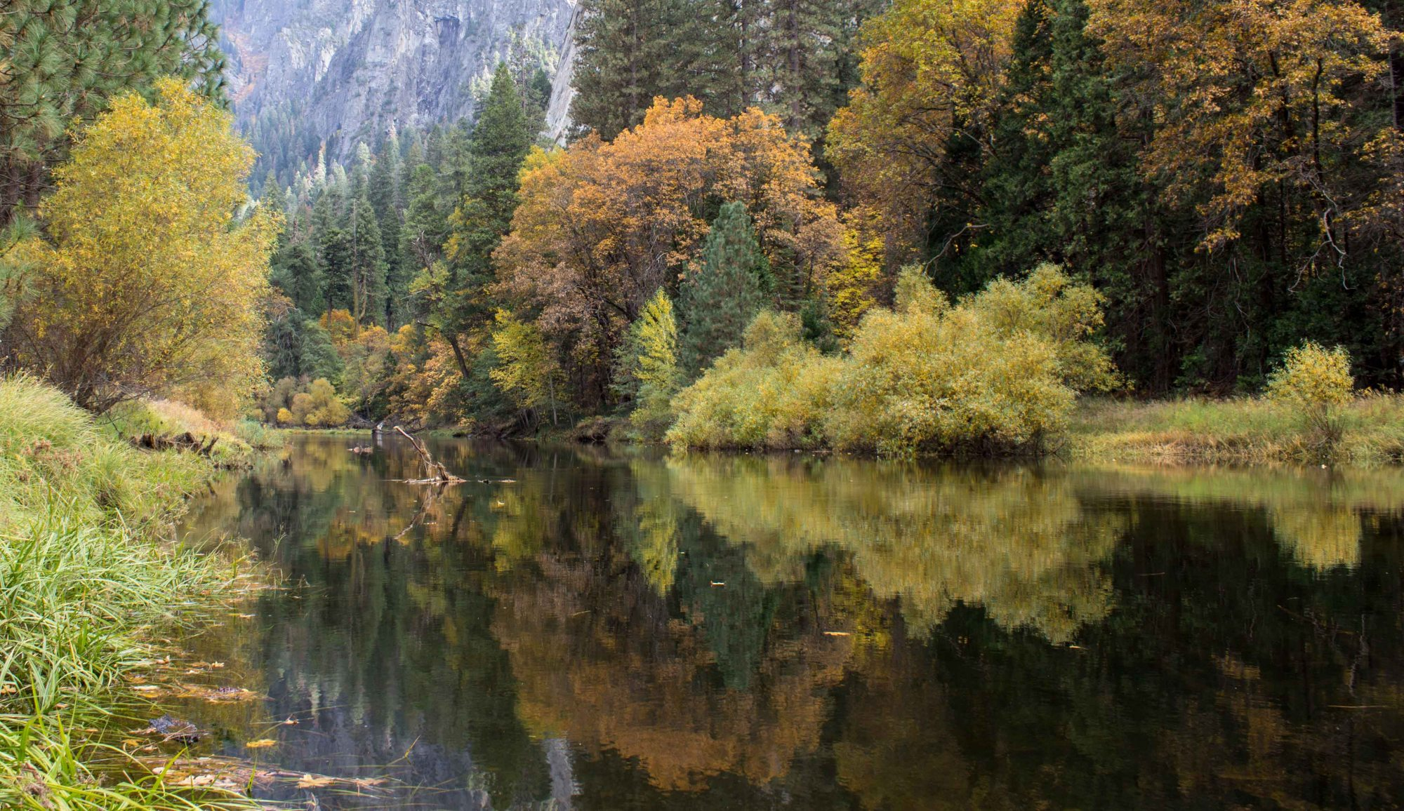 River reflection of fall foliage Yosemite National Park